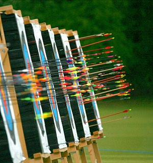 alternative types of archery - target